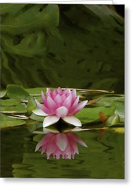 Double Lily Greeting Card