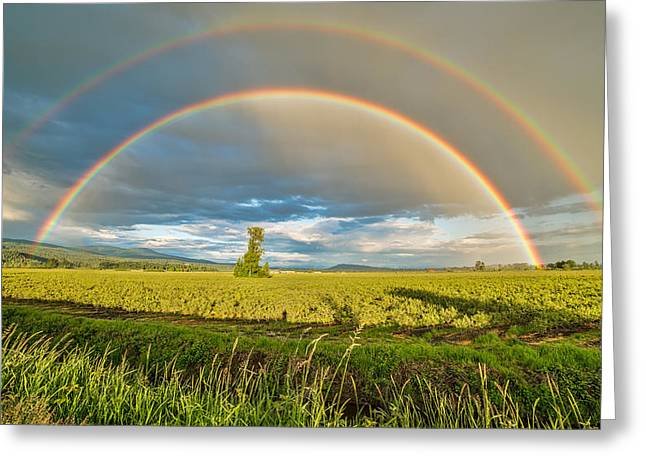 Double Rainbow Greeting Card by James Wheeler