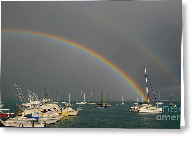 Double Rainbow Greeting Card by Joan McArthur