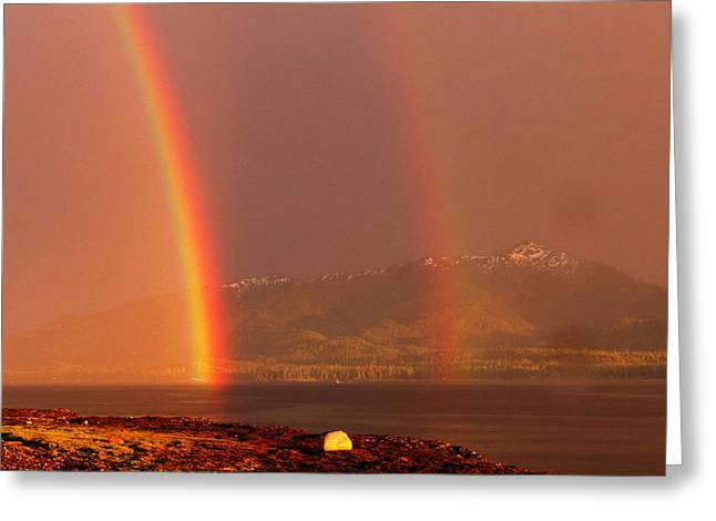Double Rainbow Greeting Card by Karen Horn