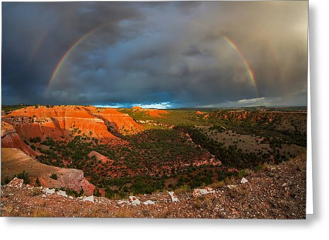 Double Rainbow Greeting Card by Leland D Howard