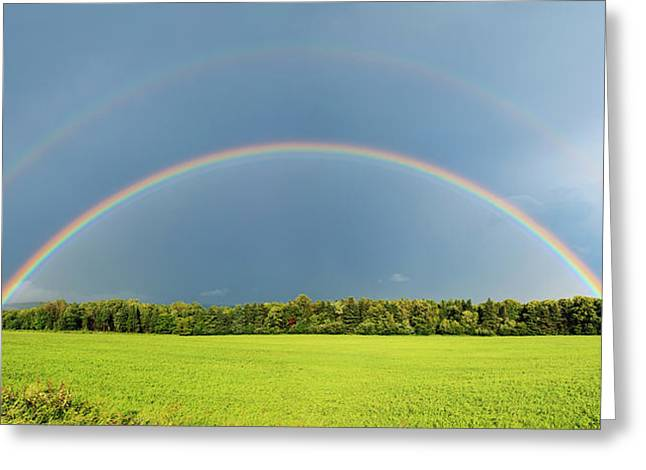Double Rainbow Over Trees And Lush Greeting Card