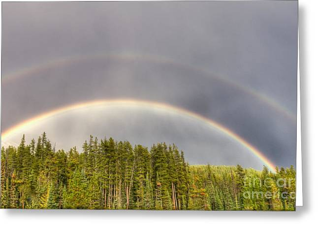 Double Rainbow Greeting Card by Wanda Krack