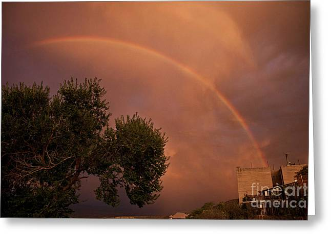 Double Red Rainbow With Tree In Jerome Greeting Card