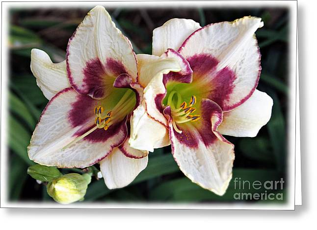 Double The Bloom Greeting Card by Elizabeth Winter