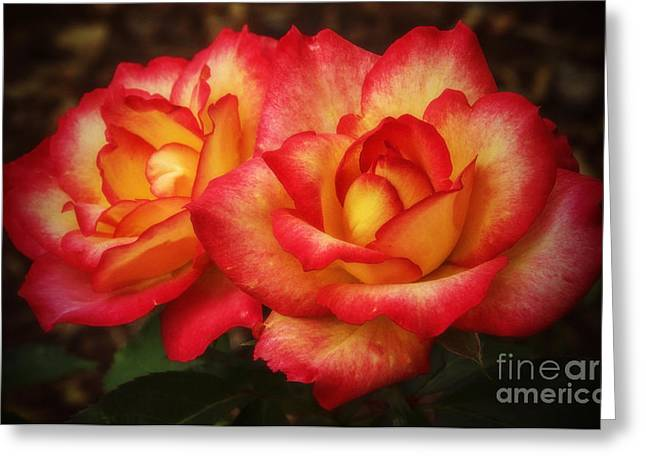 Double The Delight Greeting Card by Elizabeth Winter