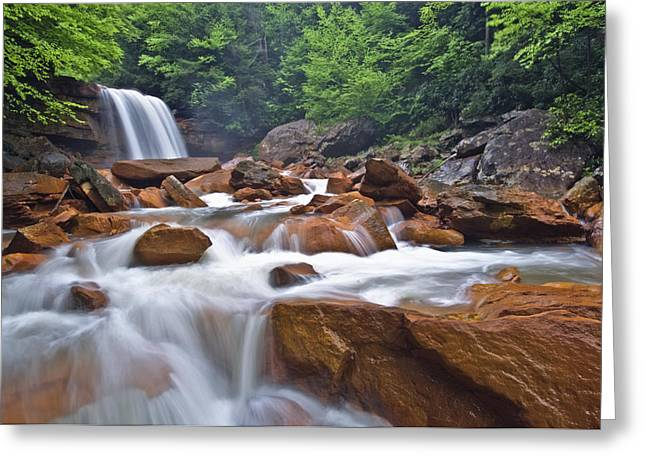 Douglas Falls Spring Rush Greeting Card by Joseph Rossbach