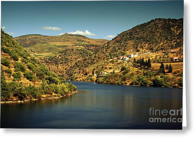 Douro Landscape Il Greeting Card