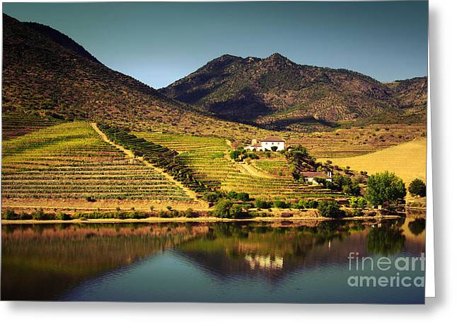 Douro Landscape Iv Greeting Card