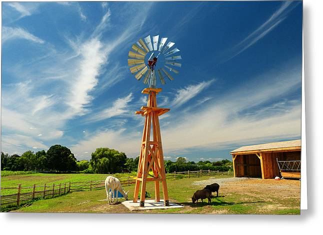 Greeting Card featuring the photograph Down On The Farm by Elaine Franklin