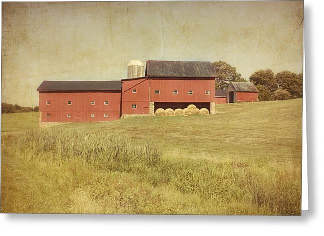 Down On The Farm Greeting Card by Kim Hojnacki