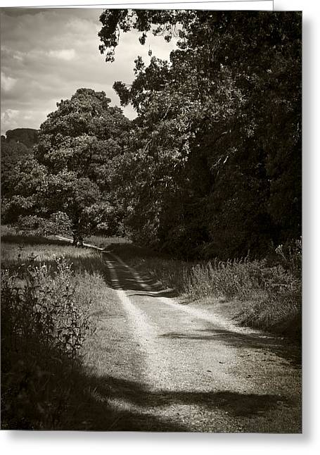 Down The Old Farm Track Greeting Card by Stewart Scott