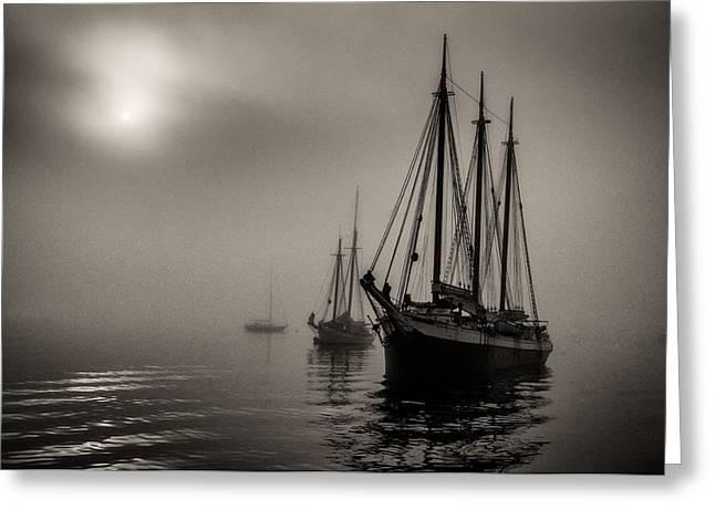 Downeast Fog 1 Greeting Card by Fred LeBlanc