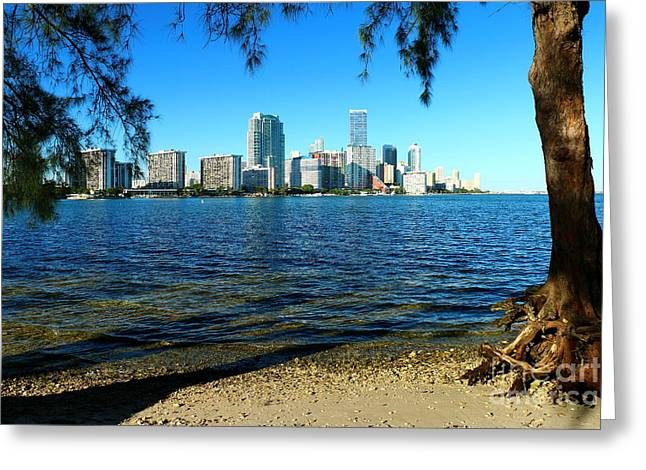 Downtown Miami View Greeting Card by Christiane Schulze Art And Photography