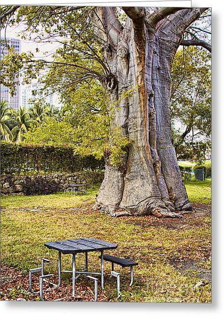 Downtown Old Tree Greeting Card