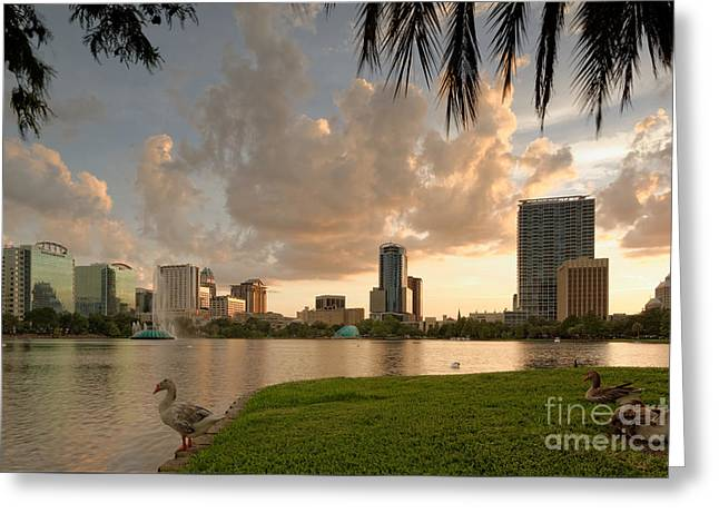 Downtown Orlando Skyline Lake Eola Sunset Greeting Card