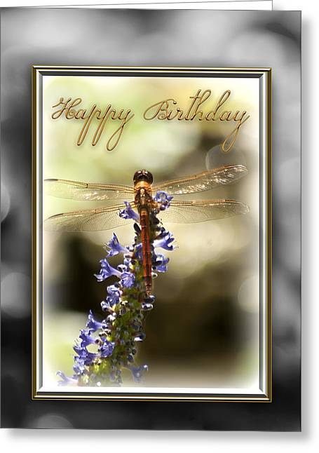 Greeting Card featuring the photograph Dragonfly Birthday Card by Carolyn Marshall