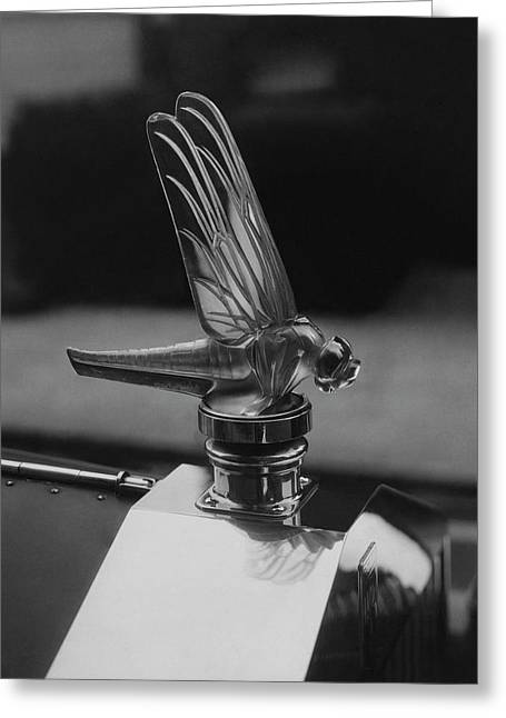 Dragonfly Hood Ornament Greeting Card by Martinus Andersen