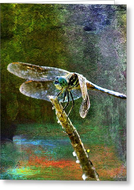 Dragonfly  Greeting Card by J Larry Walker