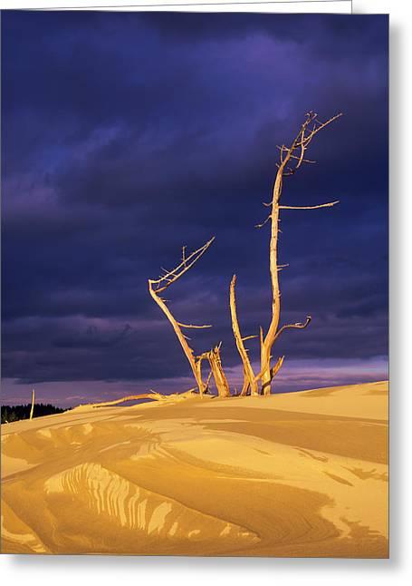 Dramatic Light Strikes The Sand Dunes Greeting Card