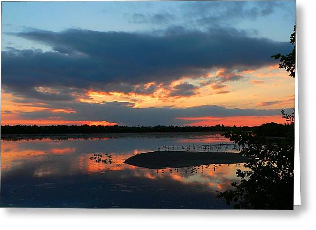 Dramatic Sunset Greeting Card by Rosalie Scanlon