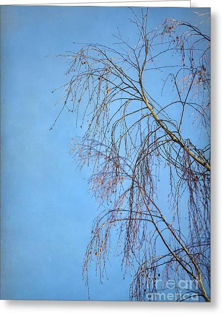 Dream Blue Greeting Card by Evelina Kremsdorf