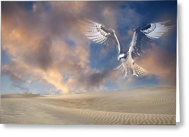 Dream Hawk Greeting Card by Georgiana Romanovna
