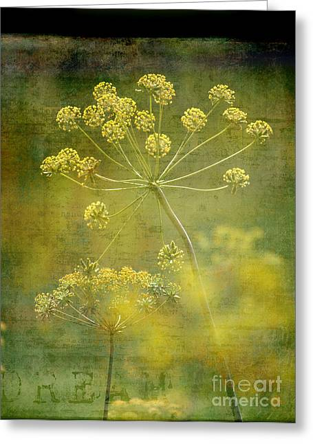 Dream Greeting Card by Sharon Elliott