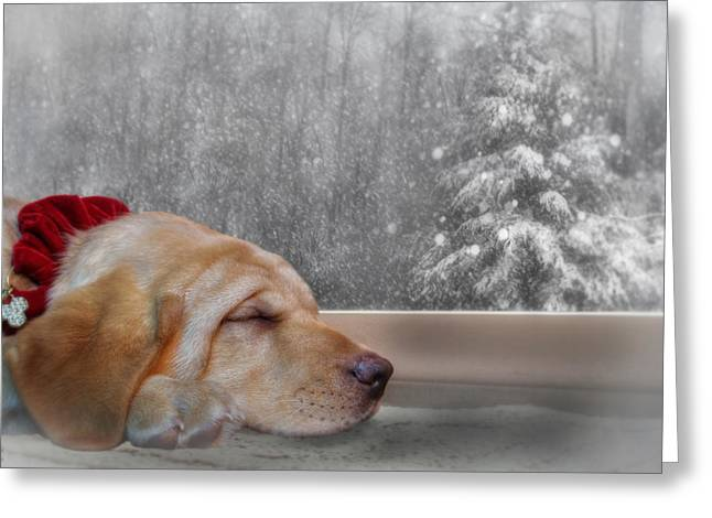 Dreamin' Of A White Christmas 2 Greeting Card