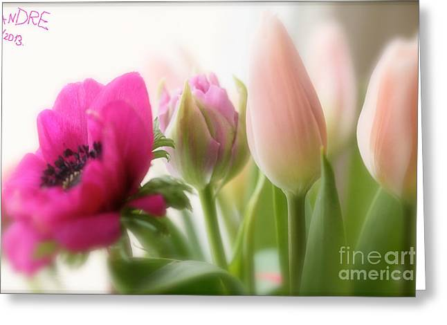 Dreaming Of You....spring Flower ... Feelings Of Love. Greeting Card by  Andrzej Goszcz