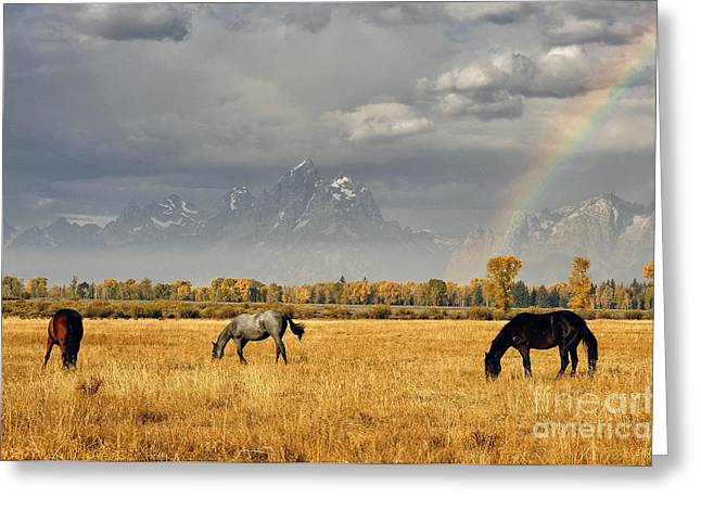 Dreams At The End Of The Rainbow Greeting Card by Deby Dixon