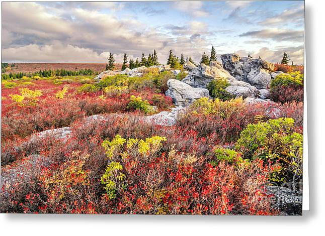 Dreamscape Greeting Card by Anthony Heflin