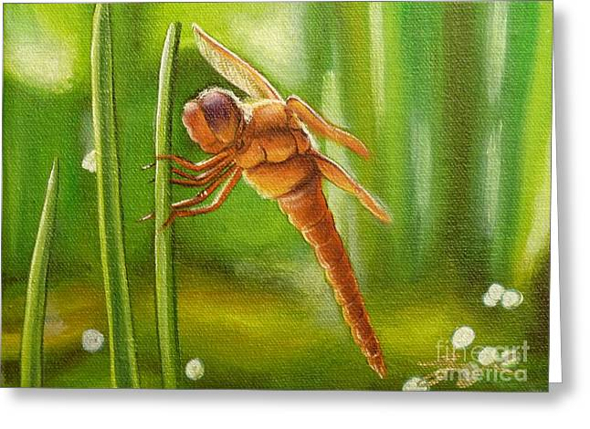 Dreamtime Dragonfly Greeting Card by Gayle Utter
