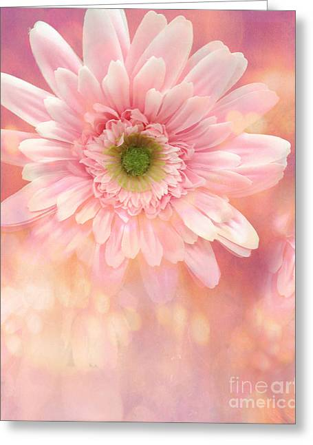 Dreamy Cottage Shabby Chic Pink Yellow Mango Gerber Daisy Flowers - Gerber Daisies Greeting Card by Kathy Fornal