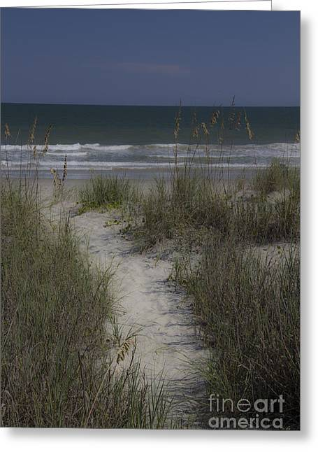 Dreamy Path To The Beach Greeting Card by Teresa Mucha