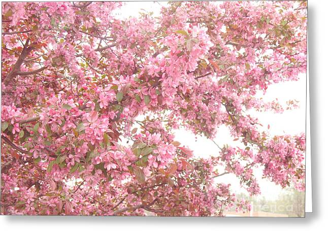Dreamy Pink South Carolina Spring Apple Blossom Trees Greeting Card by Kathy Fornal