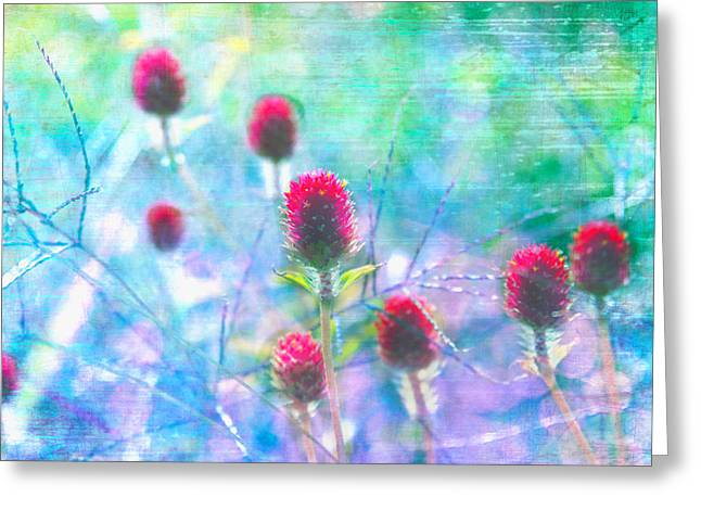Dreamy Red Spiky Flowers 2 Greeting Card by Karen Stephenson