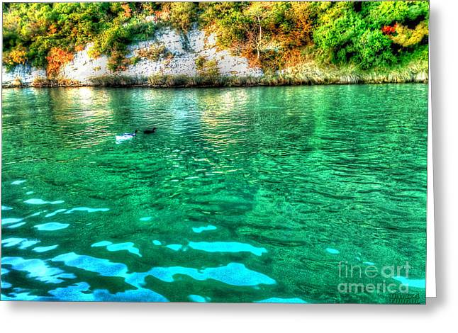 Greeting Card featuring the photograph Dreamy River by Hanza Turgul