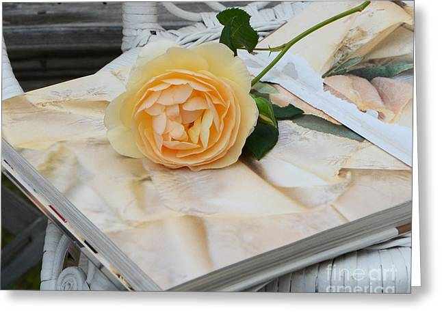 Dreamy Romantic Yellow Rose On French Book - Shabby Chic Yellow Rose Decor Greeting Card by Kathy Fornal