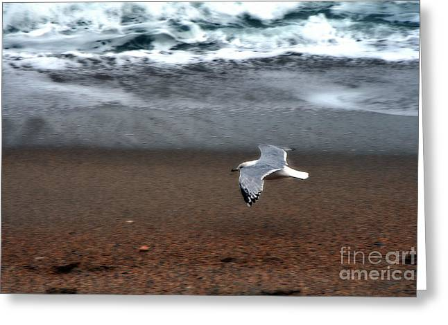 Dreamy Serene Ocean Waves Coastal Scene Greeting Card by Kathy Fornal