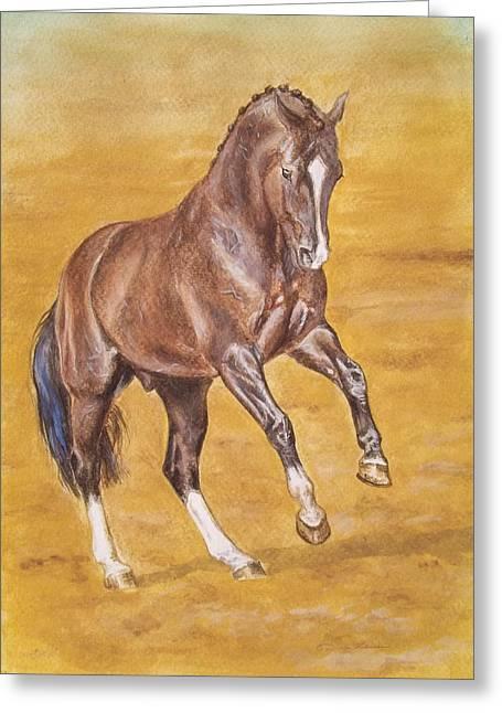 Dressage Stallion -bay Horse Greeting Card by Dorota Zdunska