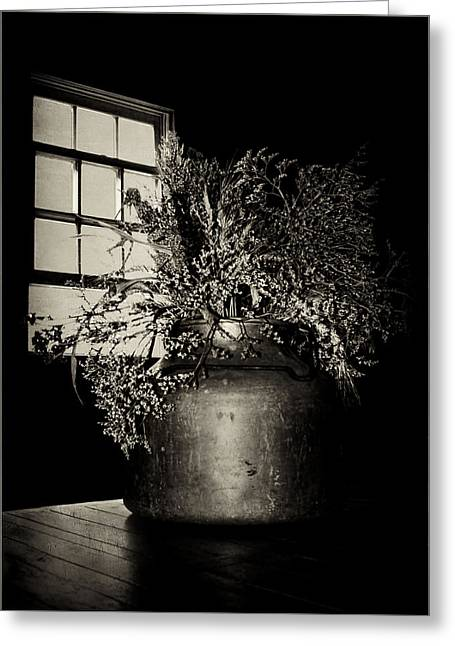 Dried Arrangement - Window Light Greeting Card by Nikolyn McDonald