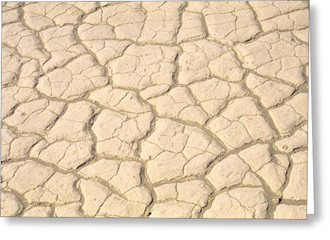 Dried Mud Death Valley Ca Usa Greeting Card by Panoramic Images