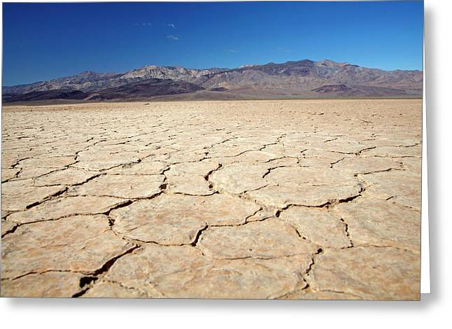 Dried Mud In Salt Pan, Panamint Valley Greeting Card by David Wall