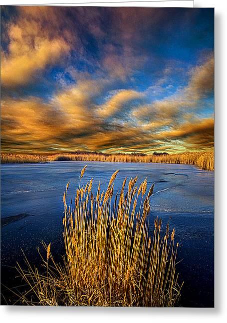 Driftin Winds Greeting Card by Phil Koch