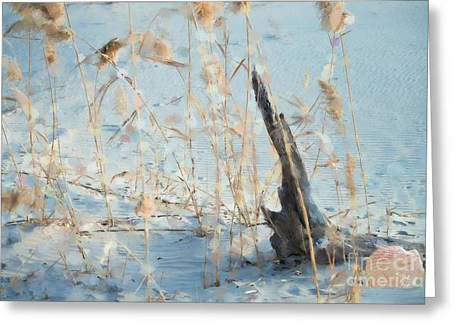 Driftwood Abstract Greeting Card by Betty LaRue