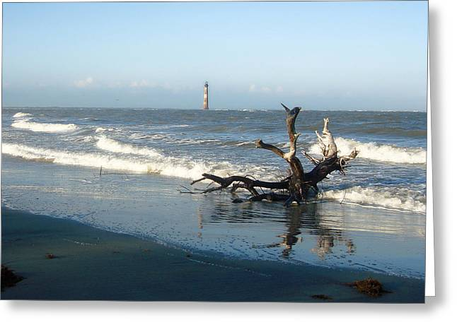 Greeting Card featuring the photograph Driftwood And Morris Island Lighthouse by Ellen Tully