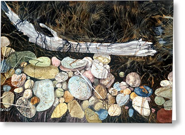 Driftwood And Pebbles Greeting Card