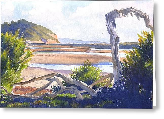 Driftwood At Torrey Pines Greeting Card by Mary Helmreich