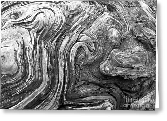 Driftwood Greeting Card